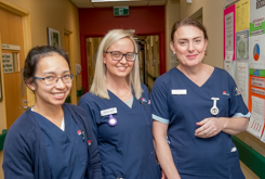 Practising Nurses and Midwives